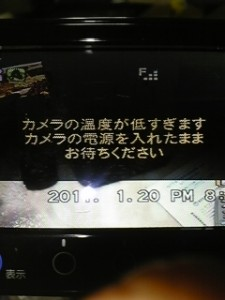 DVC00347.jpg
